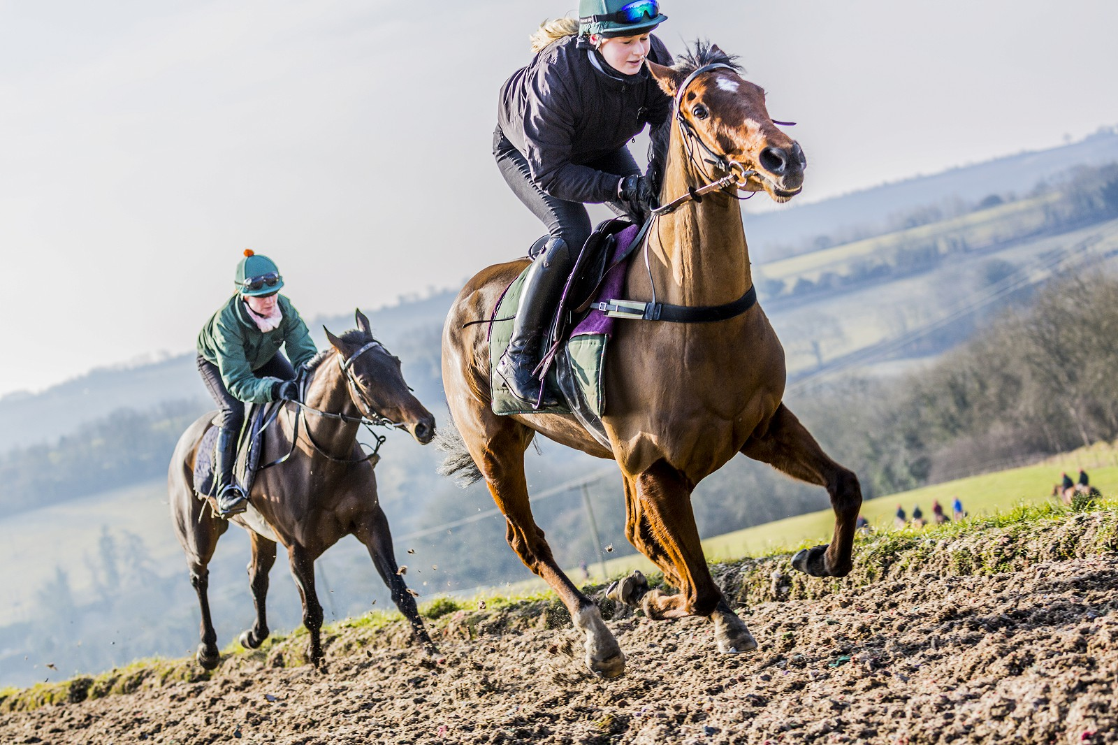 Canter Carpet equestrian surface racing gallops. Nigel Twiston Davies racehorses